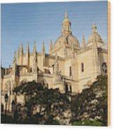 Spain, Castilla Y Leon Region, Segovia Wood Print