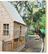 A Backyard Chicken Coop In Austin Wood Print