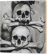 Human Bones. Wood Print