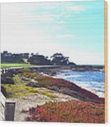 17 Mile Drive Shore Line II Wood Print by Barbara Snyder