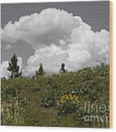 Cloudy With Green Wood Print