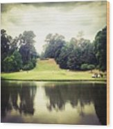 #17 The Bluffs #golf #iphone5 Wood Print
