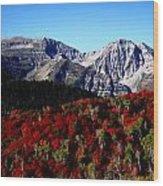 Rocky Mountain Fall Wood Print