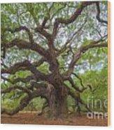 Southern Angel Oak  Wood Print