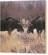 Moose Wood Print by Art Wolfe