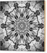 1800 10 Wood Print by Brian Johnson