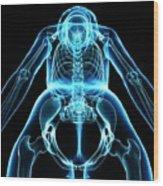 Female Skeleton Wood Print