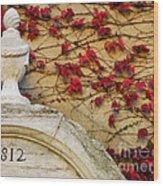 1812 Fountain Wood Print