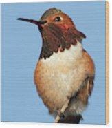Birds Of The World Wood Print