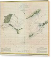 1853 Us Coast Survey Chart Or Map Of St Georges Sound Florida Wood Print