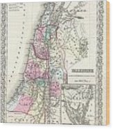 1855 Colton Map Of Israel Palestine Or The Holy Land Wood Print
