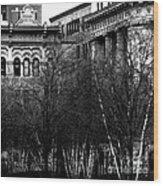 1873 Wood Print