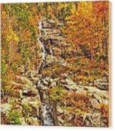 1890 Silver Cascades Wood Print
