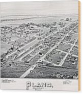 1890 Vintage Map Of Plano Texas Wood Print