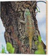 African Reptiles Wood Print