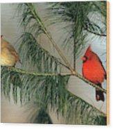 Northern Cardinal (cardinalis Cardinalis Wood Print