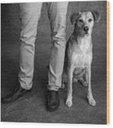 Portrait Of Red Bone Coon Mix Dog Wood Print
