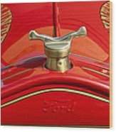 1919 Ford Volunteer Fire Truck Wood Print by Jill Reger