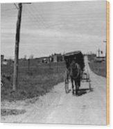 1920s 1930s Amish Man Driving Buggy Wood Print