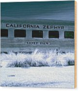 1948 California Zephyr Silver Palm Near Infrared Blue Wood Print