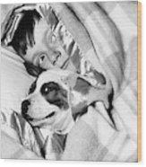 1950s Boy Hiding Under Blanket In Bed Wood Print