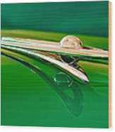 1955 Packard Clipper Hood Ornament 3 Wood Print