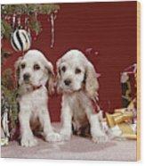 1960s Two Cocker Spaniel Puppies Wood Print