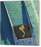 1963 Studebaker Avanti Hood Ornament Wood Print by Jill Reger