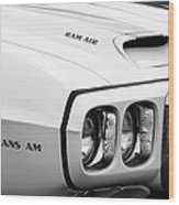 1969 Pontiac Trans Am  Wood Print