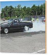 1984 07-06-14 Esta Safety Park Wood Print