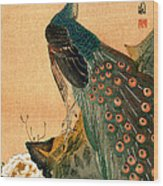19th C. Japanese Peacock Wood Print