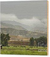 1st Day Of Rain Great Colorado Flood Wood Print
