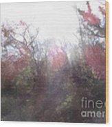 2-20 Manifestations Of Eternity Wood Print