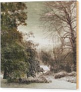 A Dusting Of Snow Wood Print