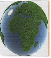 A Greener Earth Wood Print