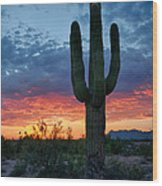 A Saguaro Sunset  Wood Print