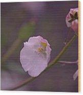 A Soft Flower Wood Print