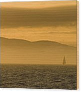 Acadia National Park Sunset Wood Print