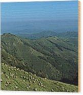 Aerial View Of Mountain Range Wood Print