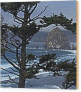 Along The Oregon Coast Wood Print