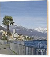 Alpine Village On The Lakefront Wood Print