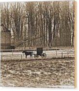 Amish Buggy And Corn Crib Wood Print