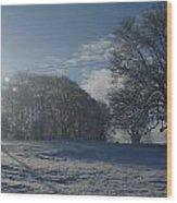 An Irish Winter Scene Wood Print