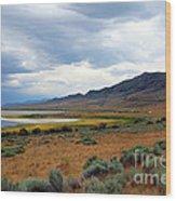 Antelope Island Wood Print