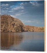 Apalachicola River  Wood Print by Debra Forand