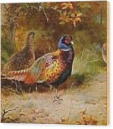 Autumn Covert Pheasants Wood Print