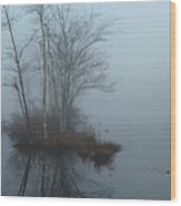 As The Fog Lifts Wood Print