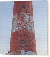 Assateague Island Lighthouse Wood Print