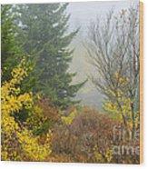 Autumn Fog Dolly Sods Wood Print