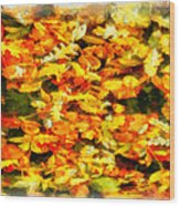 Autumn Leaves 2 Wood Print